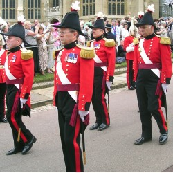 The Military Knights of Windsor